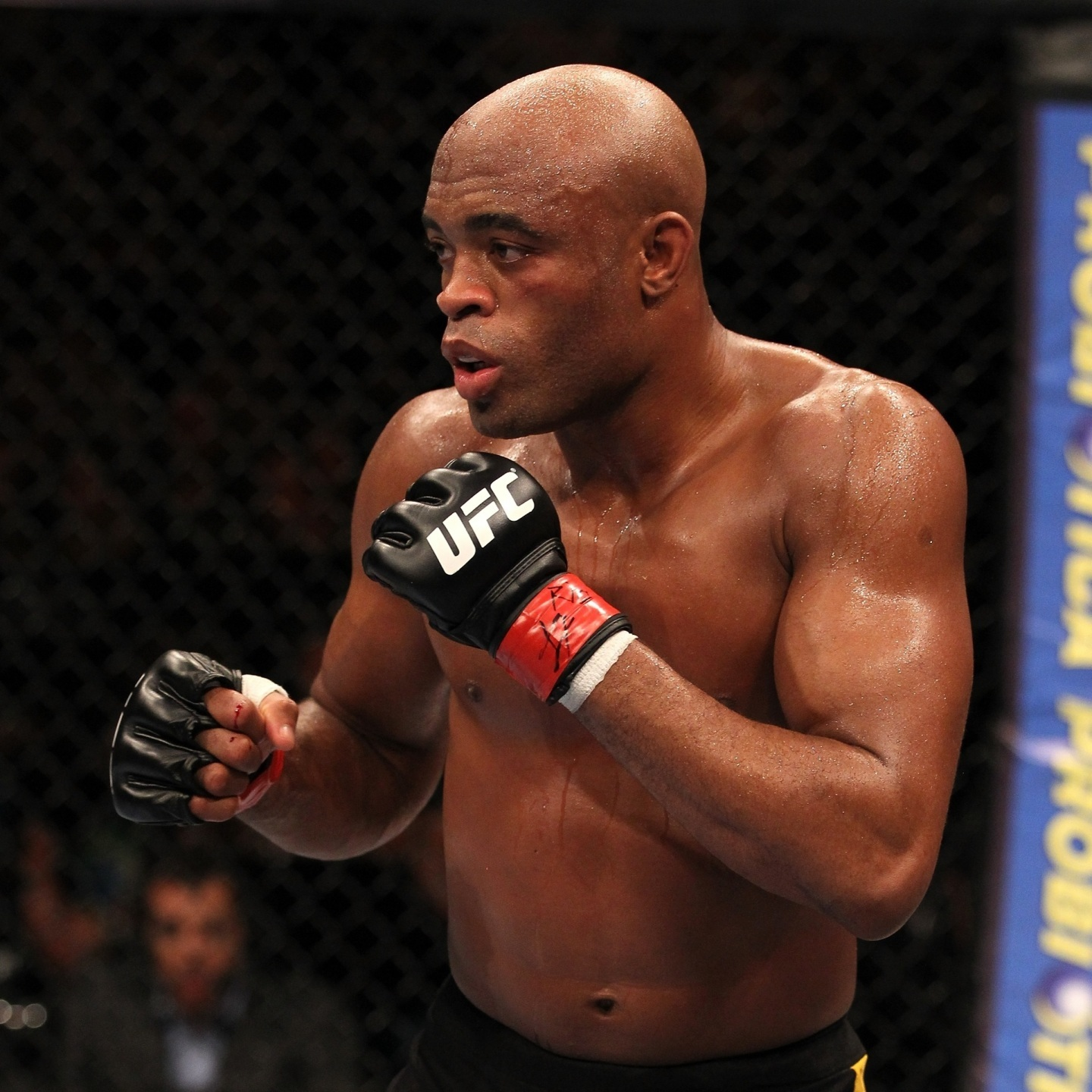 "What's Next for Anderson ""The Spider"" Silva?"